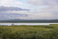 Osamotniony gazebo na jeziorze Zdjęcia Royalty Free