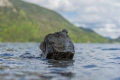 Osamotniony kamień w falistej jezioro wodzie zdjęcie royalty free