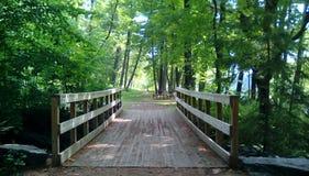 Osamotniony most obrazy stock
