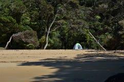 Osamotniony namiot po środku zaniechanej plaży z dżunglą w tle Obraz Stock