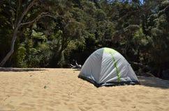 Osamotniony namiot przy piaskowatą plażą z dżunglą w tle Zdjęcia Royalty Free