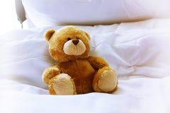 Osamotniony niedźwiedź w łóżku Obraz Stock