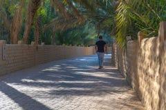 Osamotniony piechur w Al Ain oazie, Zjednoczone Emiraty Arabskie zdjęcie royalty free