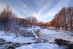 Osamotniony spadać drzewo na tle zamarznięta, lodowata rzeka przy zmierzchem, Fotografia Stock