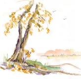 osamotniony spadek drzewo ilustracja wektor
