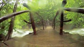 Osamotniony Turystyczny odprowadzenie Na Brid?owym obwieszeniu Nad rzeka zdjęcie wideo