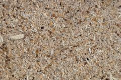 Osb - oriented strand board or qsb - quаlity strаnd bоard, ch. Osb - oriented strand board or qsb - quality strand board, chipboard texture or chipboard royalty free stock photos