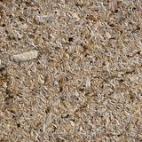 Osb - oriented strand board or qsb - quality strand board, chipboard texture or chipboard background  with copy space for text or Royalty Free Stock Image