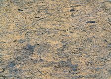 OSB panel texture royalty free stock photography