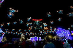The Osborne Family Spectacle of Dancing Lights Stock Images