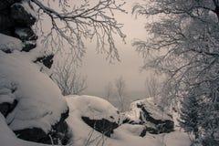 Oscila paisaje del invierno Foto de archivo