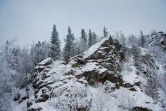 Oscila paisaje del invierno Imágenes de archivo libres de regalías