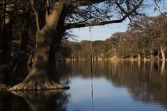 Oscilación de la cuerda en el río de Frio en Garner State Park, Tejas fotos de archivo