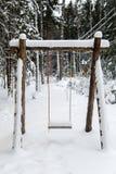 Oscilación de madera en un bosque del pino Imágenes de archivo libres de regalías