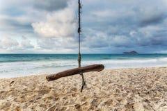 Oscilación de madera en una playa tropical de la isla de Oahu foto de archivo libre de regalías