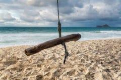 Oscilación de madera en una playa tropical de la isla de Oahu fotografía de archivo