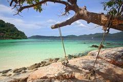 Oscilación de madera que cuelga en árbol en la playa tropical Fotos de archivo libres de regalías