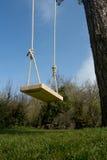 Oscilación del árbol en el jardín Imagen de archivo libre de regalías
