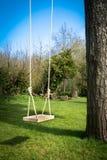 Oscilación del árbol en el jardín Imagenes de archivo