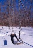 Oscilación del invierno fotografía de archivo libre de regalías
