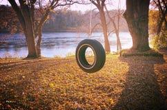 Oscilación del neumático en otoño Imagenes de archivo