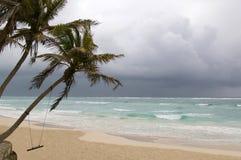Oscilación en la playa Fotos de archivo libres de regalías