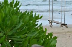 Oscilación en la playa Imágenes de archivo libres de regalías