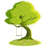 Oscilación en un árbol Imágenes de archivo libres de regalías
