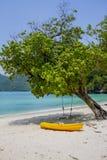 Oscilación en una playa Fotos de archivo libres de regalías