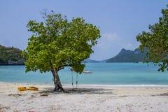 Oscilación en una playa Imagenes de archivo