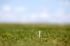 Oscilación del golf Foto de archivo libre de regalías