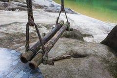 Oscilaciones en un árbol en los bancos de un río de la montaña Fotografía de archivo libre de regalías