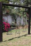 Oscilaciones en un jardín Imagenes de archivo