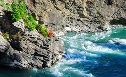 Oscile con el rapid, lugares del paraíso en Sount Nueva Zelanda Imagenes de archivo