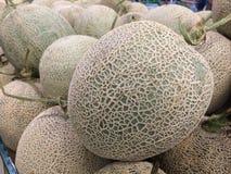 Oscile el melón Foto de archivo