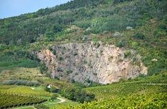 Oscile en el lado de la colina al lado del viñedo Imagen de archivo