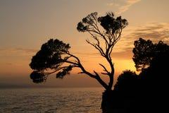 Oscile la isla en la puesta del sol en Brela, Croacia Fotos de archivo
