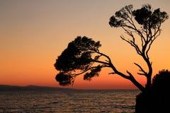 Oscile la isla en la puesta del sol en Brela, Croacia Fotografía de archivo