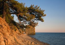 Oscile la vela en el Mar Negro en la luz de la tarde Imagen de archivo
