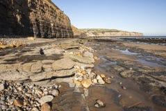 Oscile las piscinas y el acantilado en la bahía de Robin Hood, Yorkshire Imágenes de archivo libres de regalías