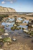 Oscile las piscinas y el acantilado en la bahía de Robin Hood, Yorkshire Imagenes de archivo