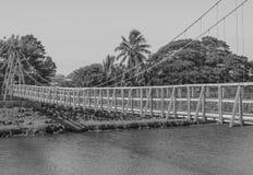 Oscillando sopra un fiume Fotografia Stock