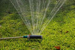 Oscillating garden sprinkler. Stock Photos