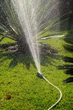 Oscillating garden sprinkler. Stock Images