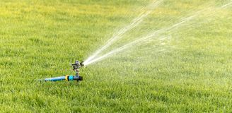 Oscillating irrigation sprinkler of the lawn at noon close-up stock photo