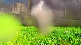 Oscillating lawn sprinkler watering grass Stock Photo