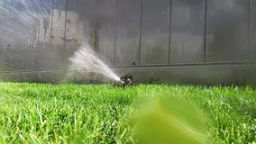 Oscillating lawn sprinkler watering grass Royalty Free Stock Images