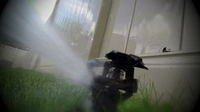 Oscillating lawn sprinkler watering grass Stock Photography