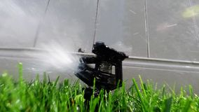 Oscillating lawn sprinkler watering grass Stock Image