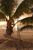 Oscillation au lever de soleil sur la côte de Belize Images libres de droits